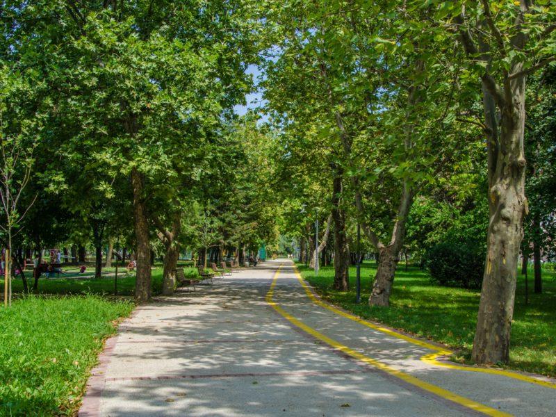 Биосферен парк Сребърна